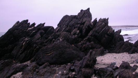 En Punta de Choros, Chile