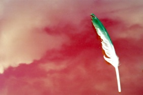 viento de ira, la pluma verde escribió: nube roja no cubras mi Alegría!