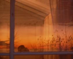 Mi cabeza es un escollo en la ilusión del amanecer