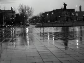 After the rain II