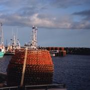 Crab traps in Gaspesie