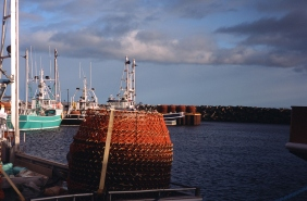 Crab traps in Gaspesie