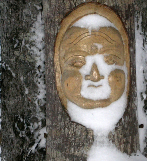 In winter meditation