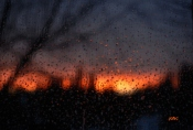 Windy,raining on sunset time.From my window