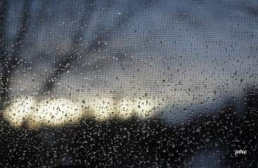 Nice portraiture of rain in my window