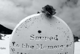 Gravestone with Blue Rose