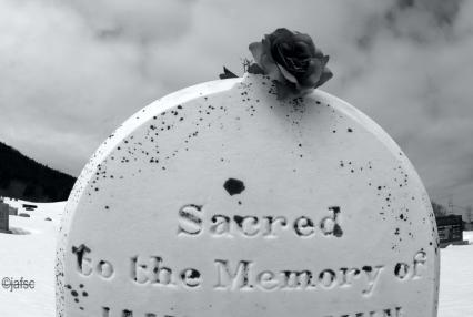 Gravestone with Blue Rose