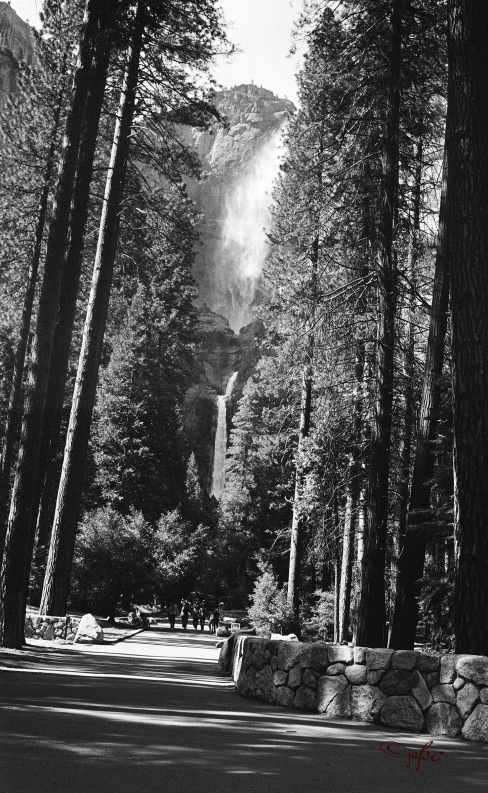 Yosemite Falls : the three chutes