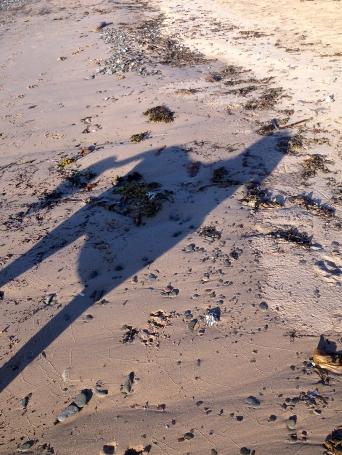 Pandita's shadow