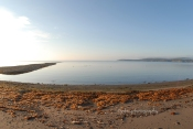 Just Pot Daniel and beautiful bay