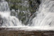 Agua y Roca, Roca y Agua, existe algo más imperecedero que ustedes esposos del bosque mágico!