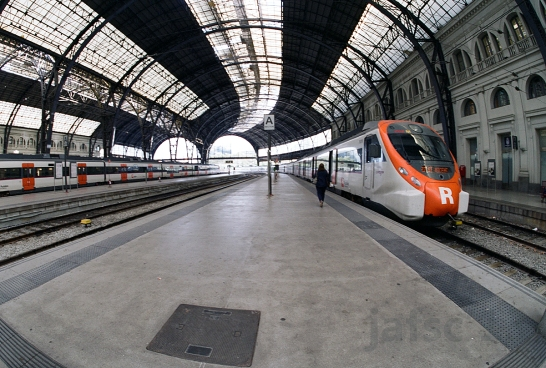 Estacion de Francia: Beautiful architecture and Trainss