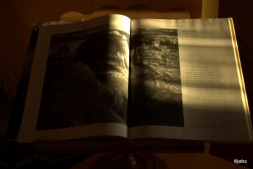 La Luz es la enseñanza de un Maestro : Ansel Adams