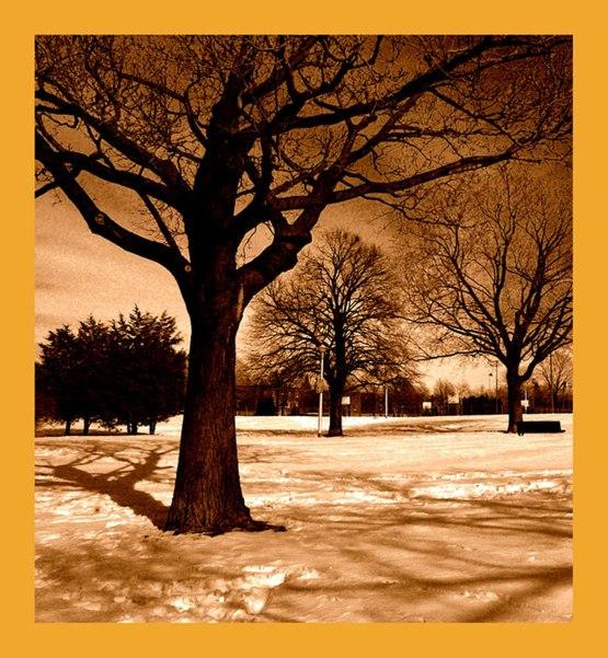 Winter Fantasies VII