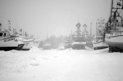 Hibernation of ships I in B&W