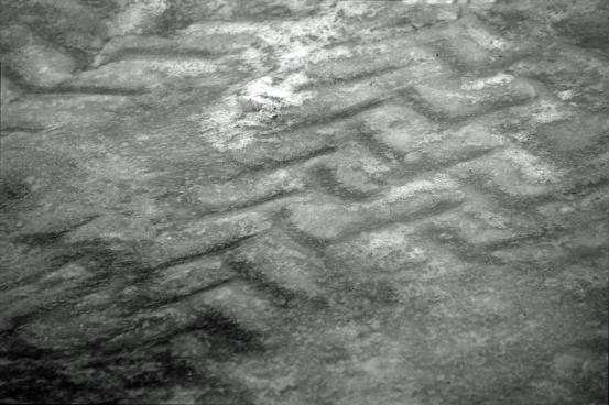 Textures of Winter
