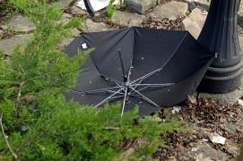 War to umbrella