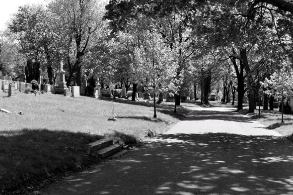 Camino en el cementerio