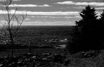 View of the seashore of Colborne