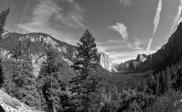 Yosemite IX