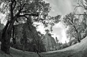 Yosemite VI